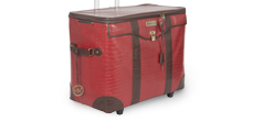 luggage_238x111